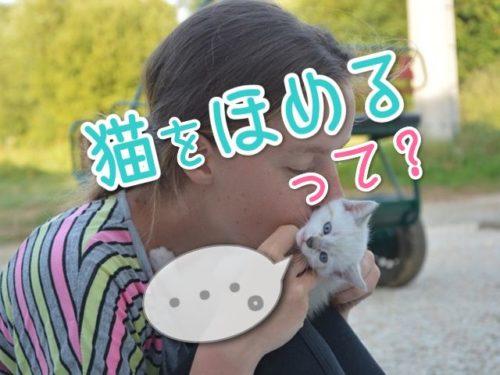 猫に愛情を表現する少女