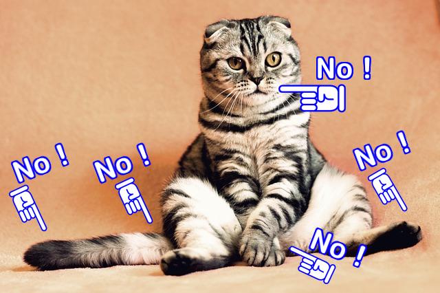 猫が触ると嫌がりやすい場所