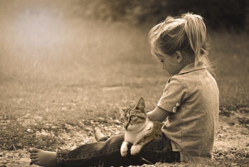 女の子の膝の上でくつろぐ猫