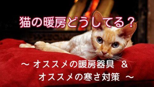 暖房器具の前でくつろぐ猫