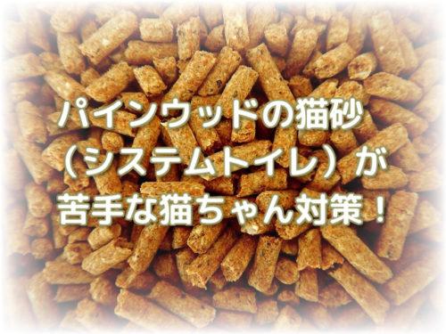 パインウッドの猫砂
