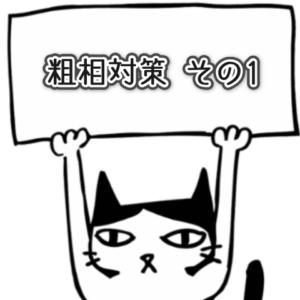 猫の粗相対策1